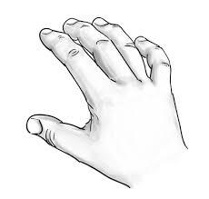 hand drawing2